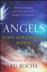 Angels--God's Supernatural Agents: Biblical Insights   and True Stories of Angelic Encounters