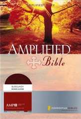 The Amplified Bible, Expanded Edition, Bonded leather, burgundy  - Slightly Imperfect