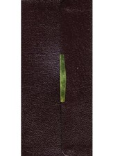 KJV Nelson Classic Companion Bible, Bonded Leather Burgundy, Snap-Flap Closure