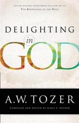 Delighting in God - eBook