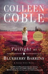 Twilight at Blueberry Barrens - eBook