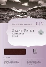 KJV Giant-Print Reference Bible, Imitation leather, burgundy