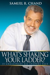 What's Shaking Your Ladder?: 15 Challenges All Leaders Face - eBook