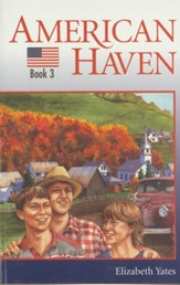 American Haven - eBook