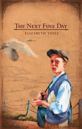 The Next Fine Day - eBook