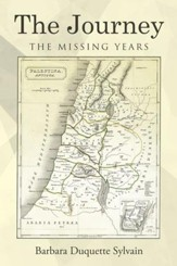 The Journey: The Missing Years - eBook