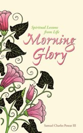 Morning Glory: Spiritual Lessons From Life - eBook