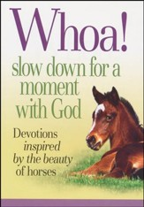 Whoa! Slow Down for a Moment with God Book