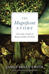 The Magnificent Story: Uncovering a Gospel of Beauty, Goodness and Truth
