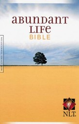 NLT Abundant Life Bible  - Slightly Imperfect
