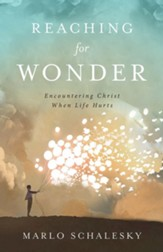 Reaching for Wonder: Encountering Christ When Life Hurts