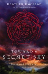 Toward a Secret Sky - eBook
