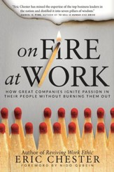 On Fire at Work: How Great Companies Ignite Passion in Their People Without Burning Them Out - eBook