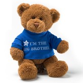 I'm the Big Brother T-Shirt Bear
