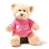I'm the Big Sister T-Shirt Bear