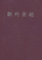 Simplified Chinese New Testament (Union)