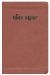 Hindi Bible (Easy-To-Read)