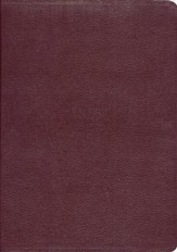 KJV Ryrie Study Bible Burgundy Bonded Leather Red Letter Thumb-Indexed - Imperfectly Imprinted Bibles