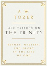 Meditations on the Trinity: Beauty, Mystery, and Glory in the Life of God - eBook