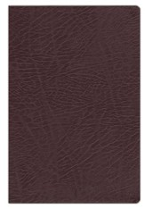 NKJV Full-Color Study Bible, Bonded Leather, Burgundy, Indexed