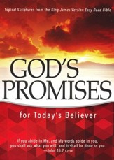 God's Promises for Today's Believer: Topical Scriptures from the King James Version Easy Read Bible (KJVer)