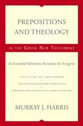 Prepositions and Theology in the Greek New Testament: An Essential Reference Resource for Exegesis - eBook