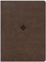 CSB Day-by-Day Chronological Bible--soft leather-look, brown