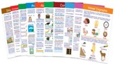 Language Arts Visual Learning Guides  Set, Grade 2 (10 Different Guides)