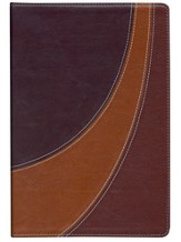 The NIV Case for Christ Study Bible--soft leather-look, black cherry/dark caramel - Slightly Imperfect