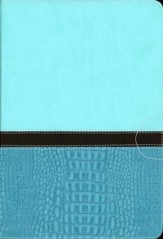 NIV Quest Study Bible: The Question and Answer Bible, Imitation Leather, Turquoise Caribbean Blue - Slightly Imperfect