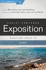 Exalting Jesus in John - eBook