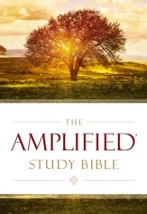 The Amplified Study Bible, eBook - eBook