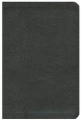 The NASB New Inductive Study Bible--soft leather-look, charcoal