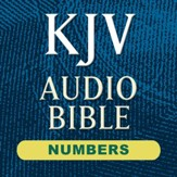 Hendrickson KJV Audio Bible: Numbers (Voice Only) [Download]