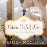 Picture Perfect Love: A June Wedding Story Audiobook [Download]