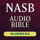 NASB Audio Bible: Numbers (Voice Only) [Download]