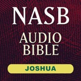 NASB Audio Bible: Joshua (Voice Only) [Download]