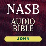 NASB Audio Bible: John (Voice Only) [Download]