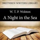 A Night in the Sea - Unabridged Audiobook [Download]