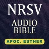 NRSV Audio Bible: Apoc Esther (Voice Only) [Download]