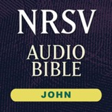 NRSV Audio Bible: John (Voice Only) [Download]