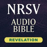 NRSV Audio Bible: Revelation (Voice Only) [Download]