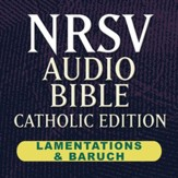 NRSV Catholic Edition AudioBible: Lamentations & Baruch (Voice Only) [Download]