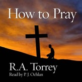 How to Pray - Unabridged edition Audiobook [Download]