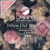 When Did You Fall? [Music Download]