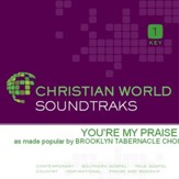You're My Praise [Music Download]