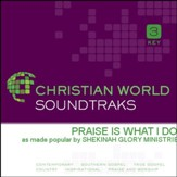 Praise Is What I Do [Music Download]