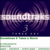 Sometimes It Takes A Storm [Music Download]