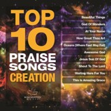 Top 10 Praise Songs: Creation [Music Download]