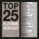 Top 25 Platinum Worship [Music Download]